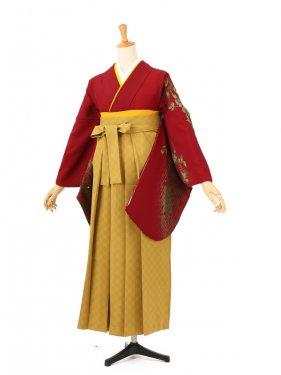 卒業袴レンタル A067エンジ