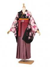 卒業袴レンタル A185黒