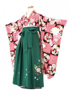 卒園式 ジュニア袴(女の子) 7158