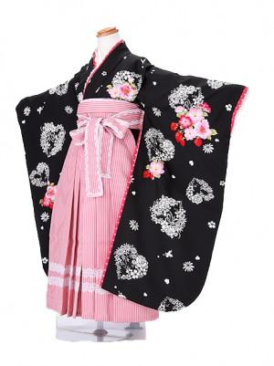 卒園式 ジュニア袴(女の子) 7170