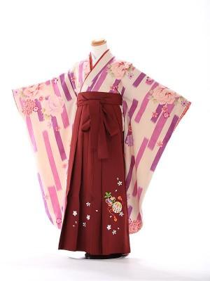 卒園式 ジュニア袴(女の子) 7133
