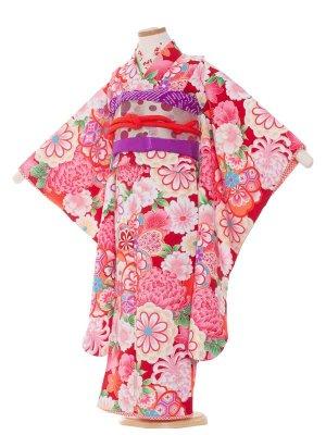 七五三レンタル(7歳女の子結び帯)7007赤色/大菊