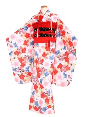 七五三レンタル(7歳女の子結び帯)7006白地に梅
