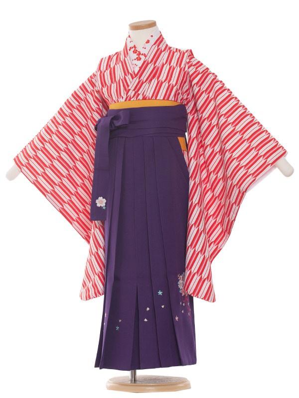 七五三(7女)9001 矢がすり /袴