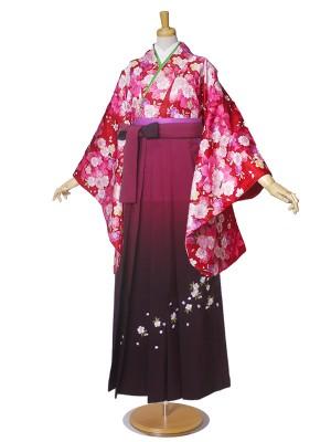 女性袴 レンタル Mサイズ