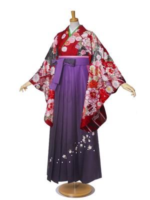 From KYOTO 女性袴 二尺袖 Mサイズ