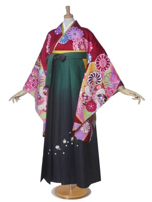 女性袴 二尺袖 Mサイズ 絵羽柄