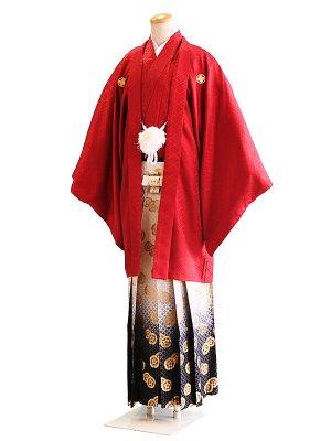 卒業式成人式男性用袴035赤|白×黒・金/ぼかし・紋 6号