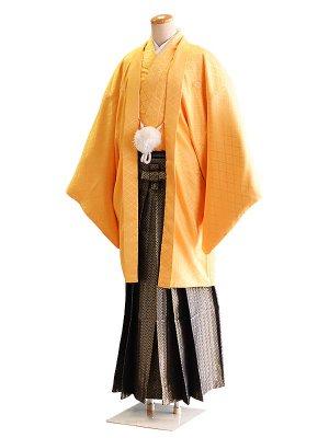 卒業式成人式男性用袴036黄 黒・金・銀/小矢羽根 6号