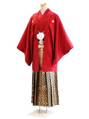 卒業式成人式男性用袴62-62赤|白・黒金/花菱 5号