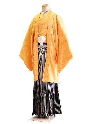 卒業式成人式男性用袴30-30黄|白×黒・銀/ぼかし・縞 7号