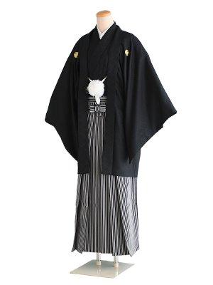 卒業式成人式男性用袴041黒|黒×グレー/縞 5号