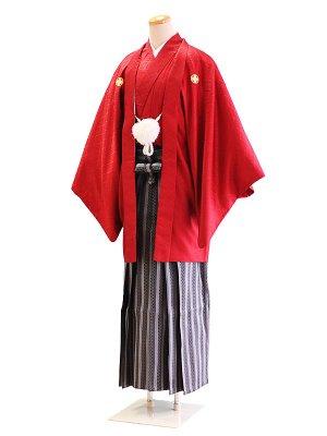 卒業式成人式男性用袴039赤|黒・グレー/縞・格子 5号