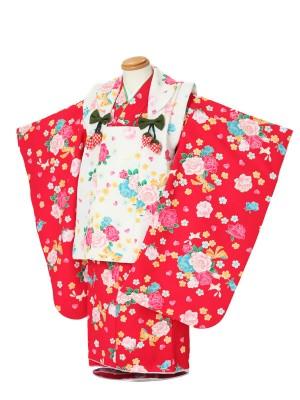 七五三(3女被布)3048 赤×白 花模様