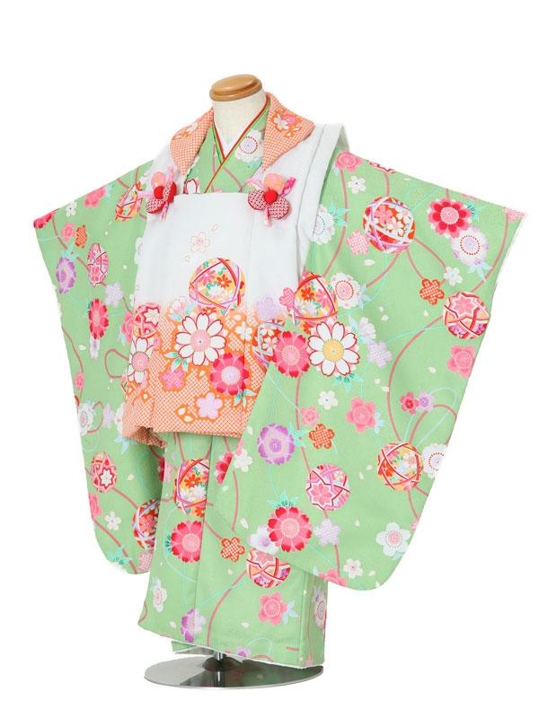 七五三(3女被布)3007 黄緑×白 桜/鞠