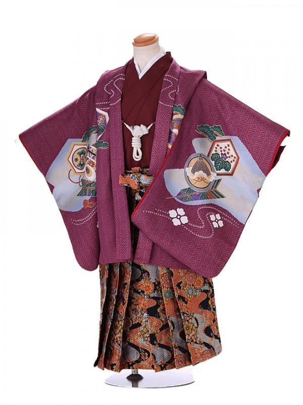 5歳 男袴 (七五三レンタル)G130 紫