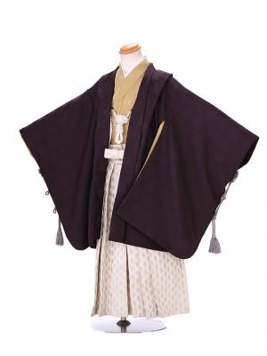 5歳 男袴 (七五三レンタル)G144 濃紫