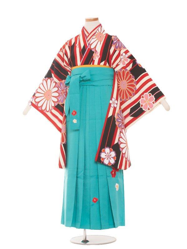 小学生卒業袴(女の子)1373赤黒矢絣×水色袴