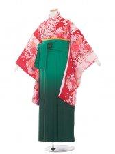 ジュニア(13女)jh1320赤花/グリーン