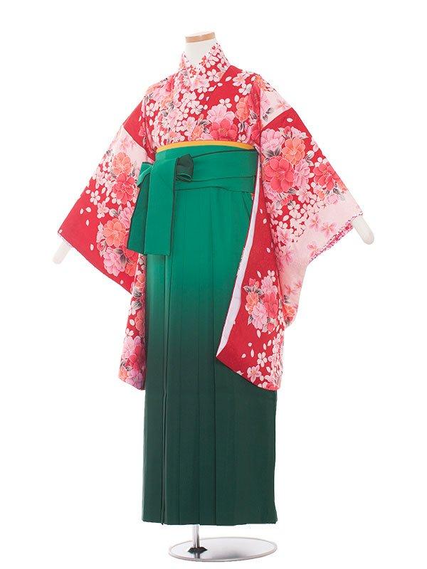 小学生卒業袴(女の子)1320赤花/グリーン