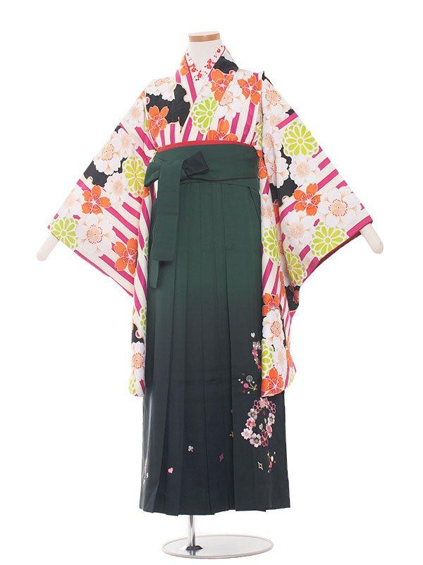 小学生卒業袴(女の子)1339 赤ストライプ/緑