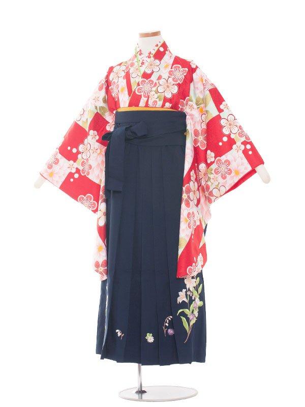 小学生卒業袴(女の子)1348 赤白小花/紺袴85