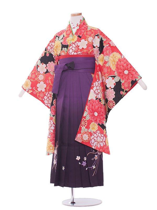 小学生卒業袴(女の子)1331 赤×黒/紫ぼかし