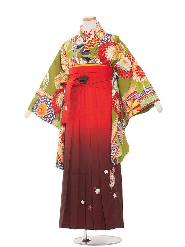 小学生卒業袴(女の子)1353 黄緑レトロ/袴85