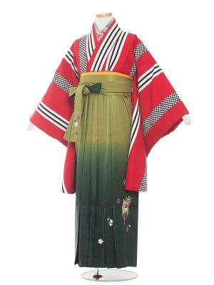 小学生卒業袴レンタル(女の子)1361 赤縞/緑袴87