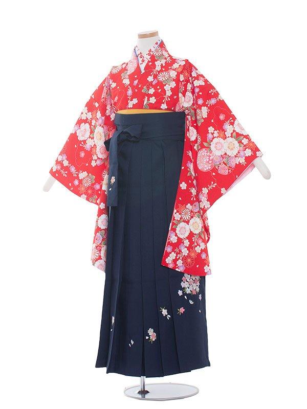 小学生卒業袴(女の子)1303 赤 / 紺