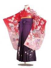 ジュニア(13女)jh1312赤絵羽柄/紫ぼかし