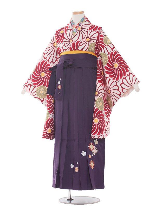 小学生卒業袴(女の子)1349 赤系ねじり梅/紫袴87
