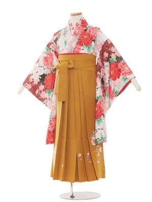 小学生卒業袴レンタル(女の子)1338 白大花/カラシ