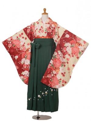 小学生卒業式袴女児803赤黄地菊/98グリーン刺繍